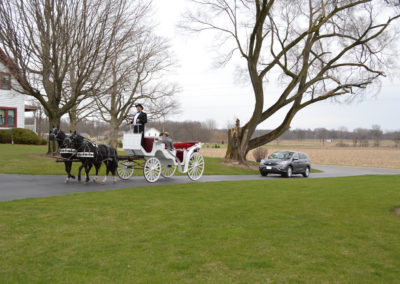 Meadow Brook Barn Horse & Carriage